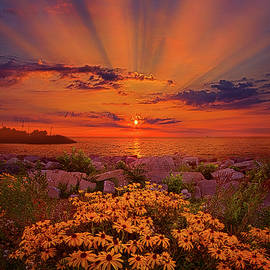 Lean Not On Your Own Understanding - Phil Koch