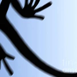Leaping Lizard - Dan Holm