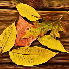 Debra Lynch - Leaves Of Autumn On Deck