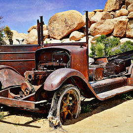 Left For Dead - Joshua Tree National Park by Glenn McCarthy