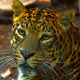Leopard Painted Vibrant Colors by Judy Vincent