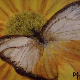 Donna Cook - Lesser Gull Butterfly
