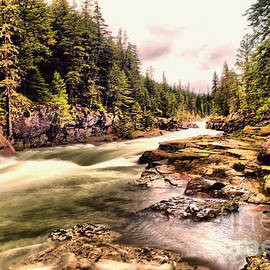 Jeff Swan - Let the river take you