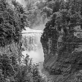 Steve Harrington - Letchworth State Park 3 bw