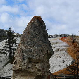 Christiane Schulze Art And Photography - Liberty Cap At Mammoth Hot Springs