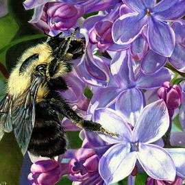 Shana Rowe Jackson - Life Among the Lilacs