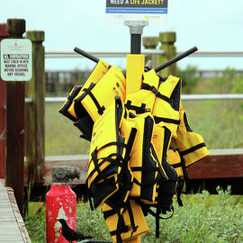 Life Jacket Station by Cynthia Guinn