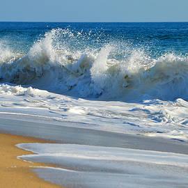 Dianne Cowen - White Lathered Surf