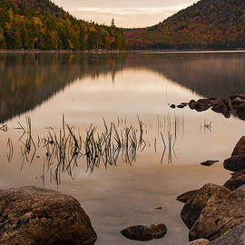 Light Muted Colors by Bob Phillips