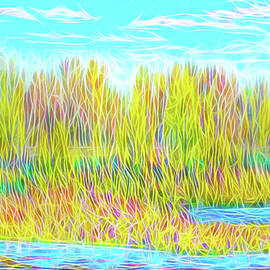 Joel Bruce Wallach - Light On Autumn Lake