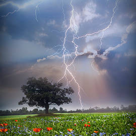 Lightning at Sunset After the Rain by Debra and Dave Vanderlaan