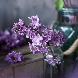 Lilac blossom, vintage tint photo by Svetlana Imagineisle by Svetlana Imagineisle
