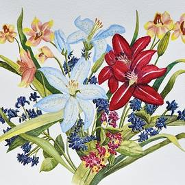 Linda Brody - Lilies and Orchids