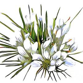 Lillies  by Karen Harding