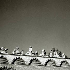 Lilliputian Minarets by Shaun Higson