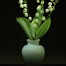 IM Spadecaller - Lily of the Valley in Vase