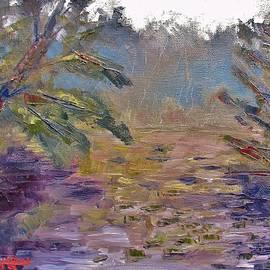 Jason Williamson -  Lily Pads On A Pond, Overcast Sky 3pm