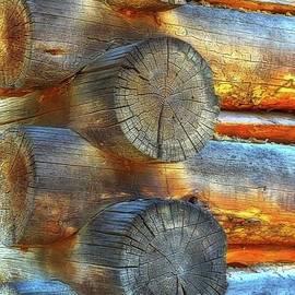Lauren Leigh Hunter Fine Art Photography - Lincoln Logs