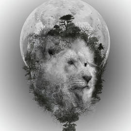 lion - Bekim Art