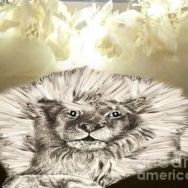 Belinda Threeths - Lion Boasting Its Mane