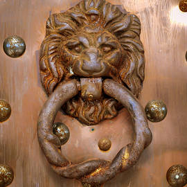 Lion Door Knocker by William Krumpelman