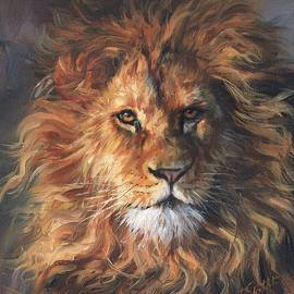 David Stribbling - Lion Portrait