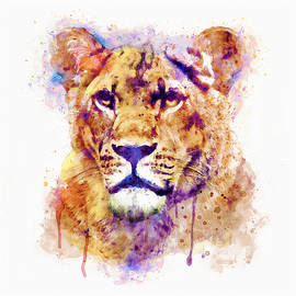 Marian Voicu - Lioness Head