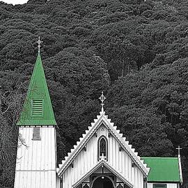 Little Church With The Bright Green Steeple by Toni Abdnour