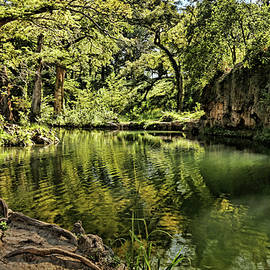 Little Cypress Creek by Judy Vincent