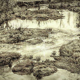 William Sturgell - Little Darby Creek in Black and White