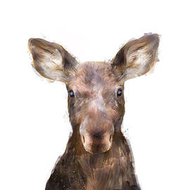Little Moose by Amy Hamilton