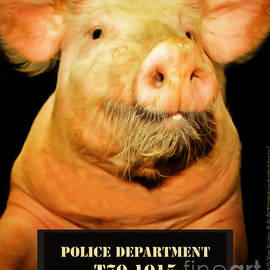 Wingsdomain Art and Photography - Little Pig Number Two Mugshot 20170921