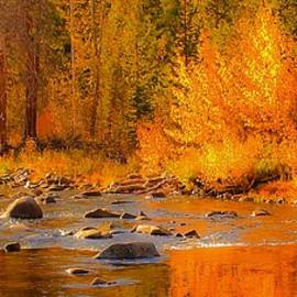 Little Truckee River by Sherri Meyer