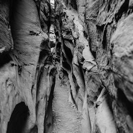 Little Wild Horse Canyon Bw by Jennifer Ancker