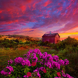 Live In The Moment by Phil Koch