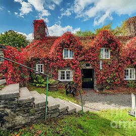 Llanrwst Tea Room by Adrian Evans