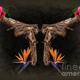 Loaded With Love - Fine Art Photography By Ronna A. Shoham by Ronna A Shoham