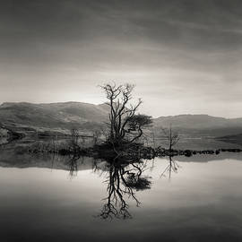 Dave Bowman - Loch Assynt Reflection