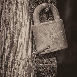 LeeAnn McLaneGoetz McLaneGoetzStudioLLCcom - Lock Hinge Chain