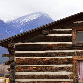 Kae Cheatham - Log Cabin from the Past