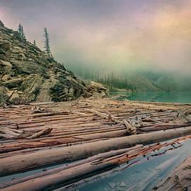 Joan Carroll - Log Jam at Moraine Lake Banff National Park Canada
