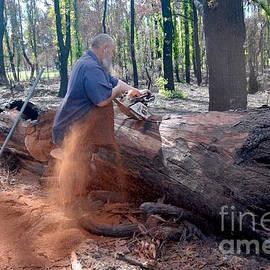 Hans Peter Goepel - Logging Forest Worker