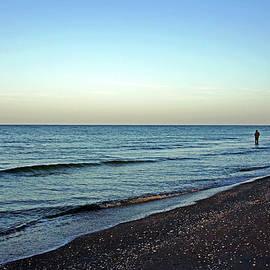 Debbie Oppermann - Lone Fisherman On The Beach