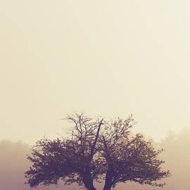 Edward Fielding - Lone Old Apple Tree