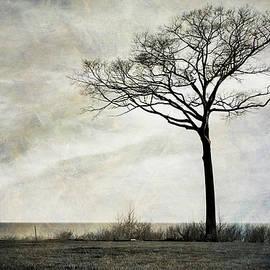 Mary Lee Dereske - Lone Tree by the Lake