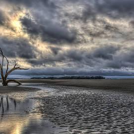 Harry B Brown - Lone Tree Under Moody Skies