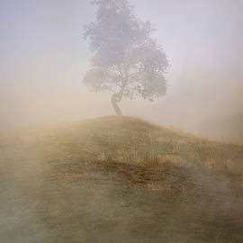 Jaroslaw Blaminsky - Loneliness at foggy dawn