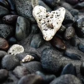 Lonely Heart by Ann Skelton