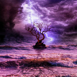 Lonely tree and the wild weather by Lilia D