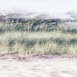 Long Island Pastel Beach  by Alissa Beth Photography